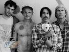 레드 핫 칠리 페퍼스 (Red Hot Chili Peppers), Live in Belfast [월드 스테이지]